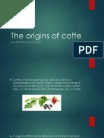 The Origins of Coffe