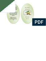 Label Olive Oil