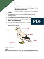Bagian Tubuh Hewan dan Fungsinya 2.docx