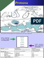 Protozoa Kuliah.ppt
