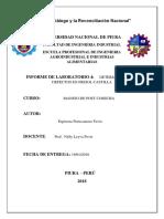 Informe Lab Manejo Frejol