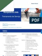 Treinamento de Serviços - Rompedores DOOSAN (Português) - 12-2011