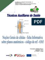 Ficha Informativa Planosanatómicos
