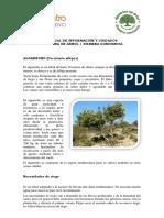 Manual de Información y Cuidados_v2.pdf