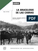 brucelosis caprina.pdf