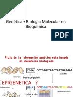 182846784-El-DNA-Como-Material-Genetico.pptx