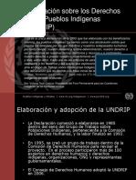 Declaracion de Naciones Unidas Para Los Derechos de Los Pueblos Indigenas
