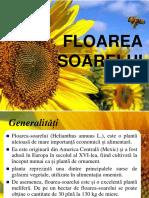 Ulei de Floarea Soarelui23