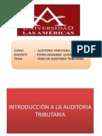 Ejemplos de Fases de Auditoria Tributaria