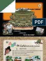 El ABC del Cafe CultivandoCalidad.ppt