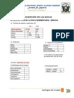 GEOLOGIA DE CAMPO (trabajo de rocas).docx