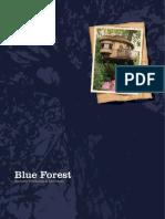 Blue Forest Broch 08