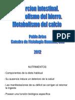 metabolismo del hierro y del calcio_FM.ppt