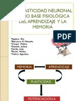Plasticidad Neuronal.ppt