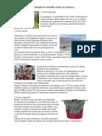 5 Actividades Economicas de Guatemala