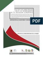 Protocolo Incumplimiento Obligacion Alimentaria
