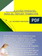 Sesion Completa Estimulacion Prenatal