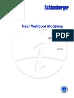 213484649-Near-Wellbore-Modeling.pdf
