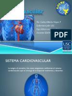 Sistema Cardiovascular Ch