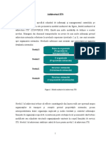 arhitecturi ITS.doc