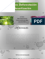 Bosques, Deforestación y Desertización
