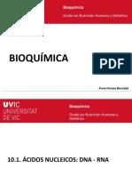 10.1. Ácidos Nucleicos DNA RNA_castellano
