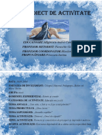 Proiect asistenta decembrie.docx