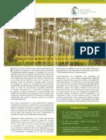 LECTURA PLANTACIONES INIA.pdf