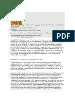 Rainforest Alliance Documento