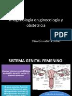 Imagen en Ginecología y Obstetricia