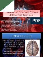 Circulación Arterial y Venosa del Sistema Nervioso.