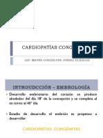 Tetralogía de Fallot PDF (1)