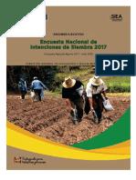 Resumen Ejecutivo Intenciones Siembra2017-2018 180817