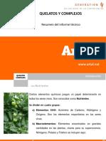 Presentación Informe Quelatos y Complejos