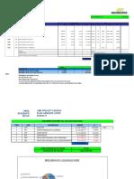 01. Formato Informe Mensual (Preliminar)
