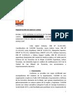 Amicus Cladem Argentina Caso Belen