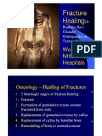 Fracture Healing and Factors Affecting It