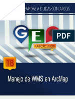 GF18.-Uso-de-WMS