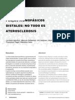 flujos_monofasicos_distales.pdf