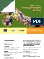 Cosecha y Postcosecha Del Cacao