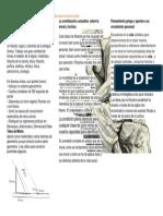 QUIMISWASHINGTON.pdf
