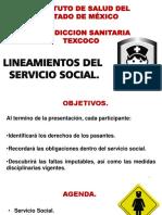 Lineamientos de Servicio Social Para Enfermería