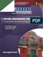 Doctrina Jurisprudencia Constitucional II, Parte 2 - Calderón, Castillo, Aguila