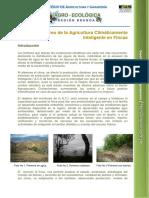 Monitoreo de Agricultura Climática