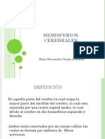 hemisferioscerebrales-101027221323-phpapp02
