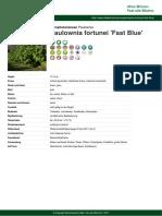 Paulownia Fortunei Fast Blue PDF 4256 de (1)