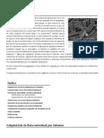 Flora_intestinal.pdf