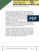 246066355 Informe 1 Congelacion de Pulpa de Frutas Docx