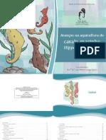 cavalo_marinho_2013_cartilha_final_ISBN.pdf