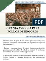 Presentación Proyecto Pollos